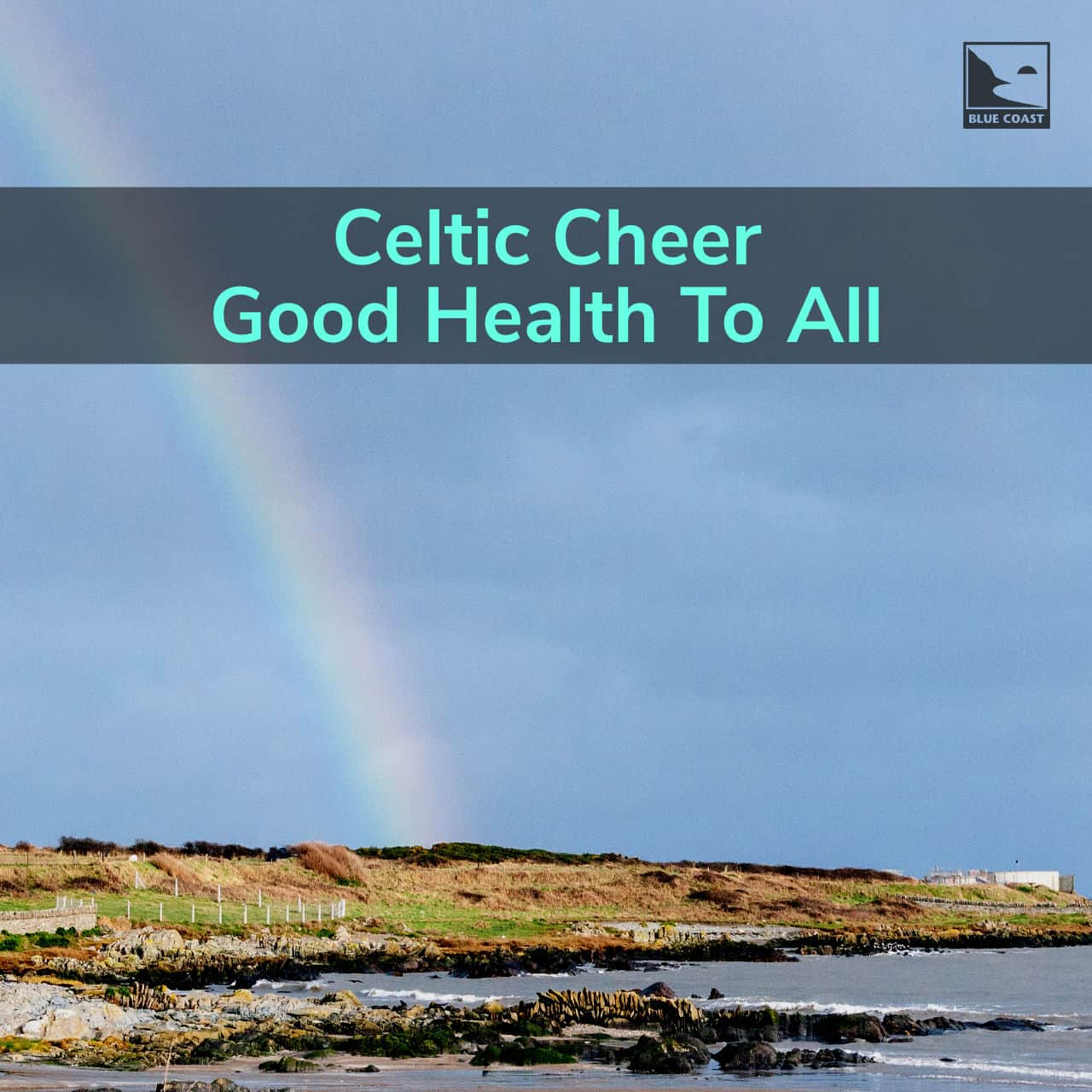 Celtic Cheer - Good Health to All!